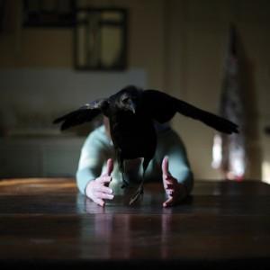 Nine Miles as the Crow Flies