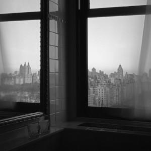 N.Y, Window
