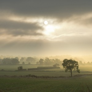 Oxfordshire Morning