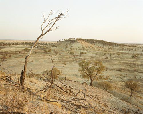 Proposition Landscape, 2004