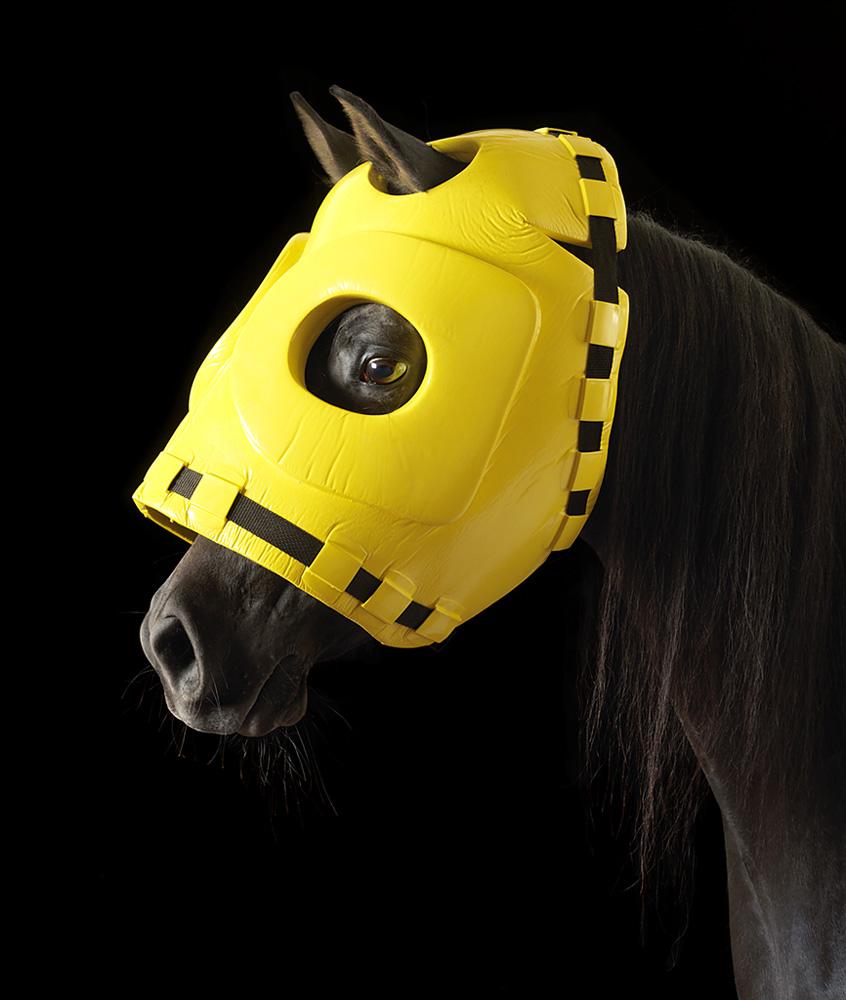 Mask – Head Protector