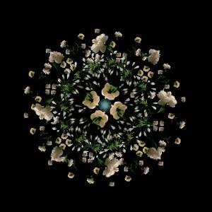 Floriculture F2.1