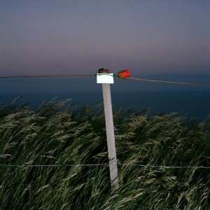 'In Memory of - 8' from the series Beachy Head