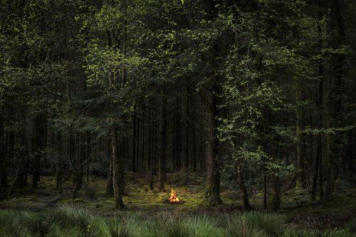 Fire 8,2018 by Ellie Davies